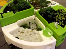 jardin aquatique salon sante autonomie 2014