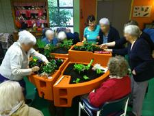 jardiner au jour du printemps EHPAD du Grand Jardin 3