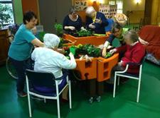 jardinage pour accueillir l'arrivée du printemps à l'EHPAD du Grand Jardin