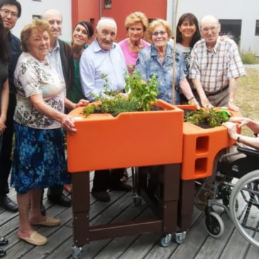 Verdurable : jardinières et outils pour un jardinage adapté