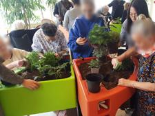 jardinage thérapeutique aphp la collégiale 2016