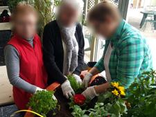 jardinage aphp rené-muret 2016