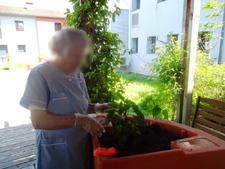 jardinage ehpad Médicis Labège 2015 1