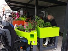 jardinage protégé MAS st-jean de malte 2015