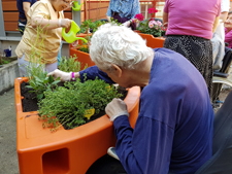 jardinage H. Bretonneau 2018