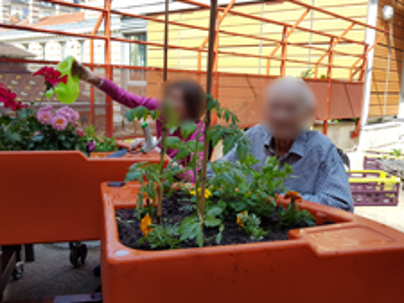 jardin realisé H. Bretonneau 2018