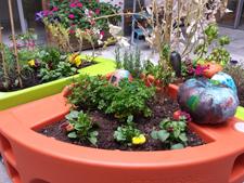 Citrouilles colorés jardinothérapie MAS St Jean de Malte 2015