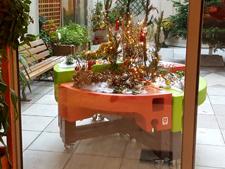 Jardin de Noël jardinothérapie à la MAS St Jean de Malte 2015