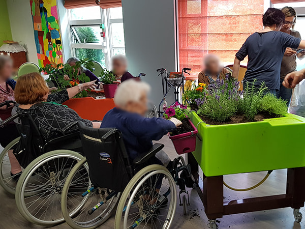 fin atelier jardinage à l'EHPAD Les Myosotis juin 2018
