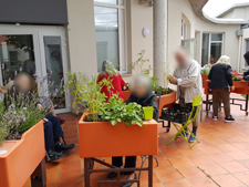tailler les plantes aphp charles-foix 06 2017 _1