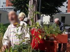 Activités autour du jardin thérapeutique à l'Hôpital Charles-Foix (94) en 2017