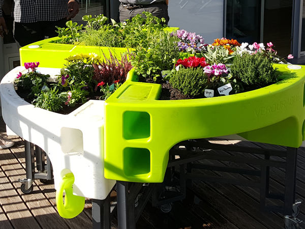 jardin automnal Centre Madeleine Meyer 1