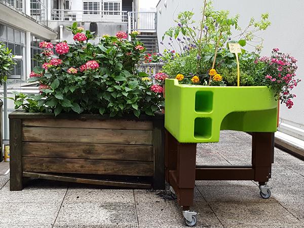 jardinière solide durable verdurable