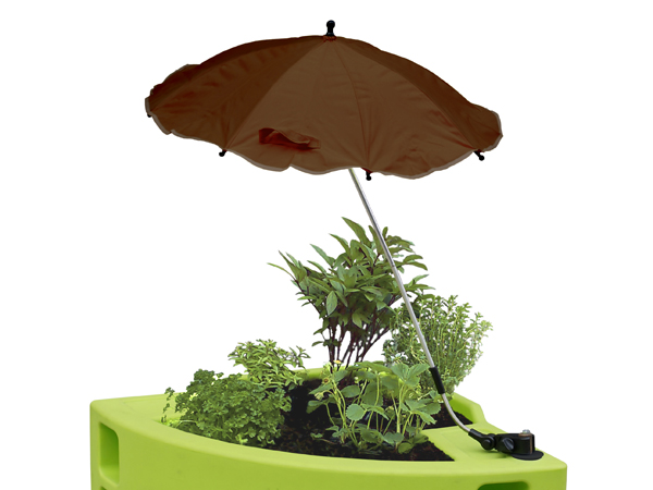 ombrelle couleur brune verdurable