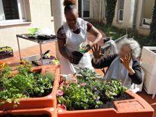 Activités autour du jardin thérapeutique à l'Hôpital Charles-Foix (94) en 2015