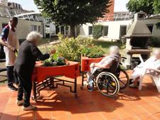 jardinage aphp charles-foix 08-2015 4