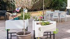 Jolies photos du jardin thérapeutique de Korian Périer de Marseille