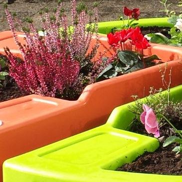 Création d'un jardin automnal (lettre N° 20)