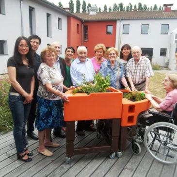 Labège. Les pensionnaires de la maison de retraite testent les jardinières mobiles