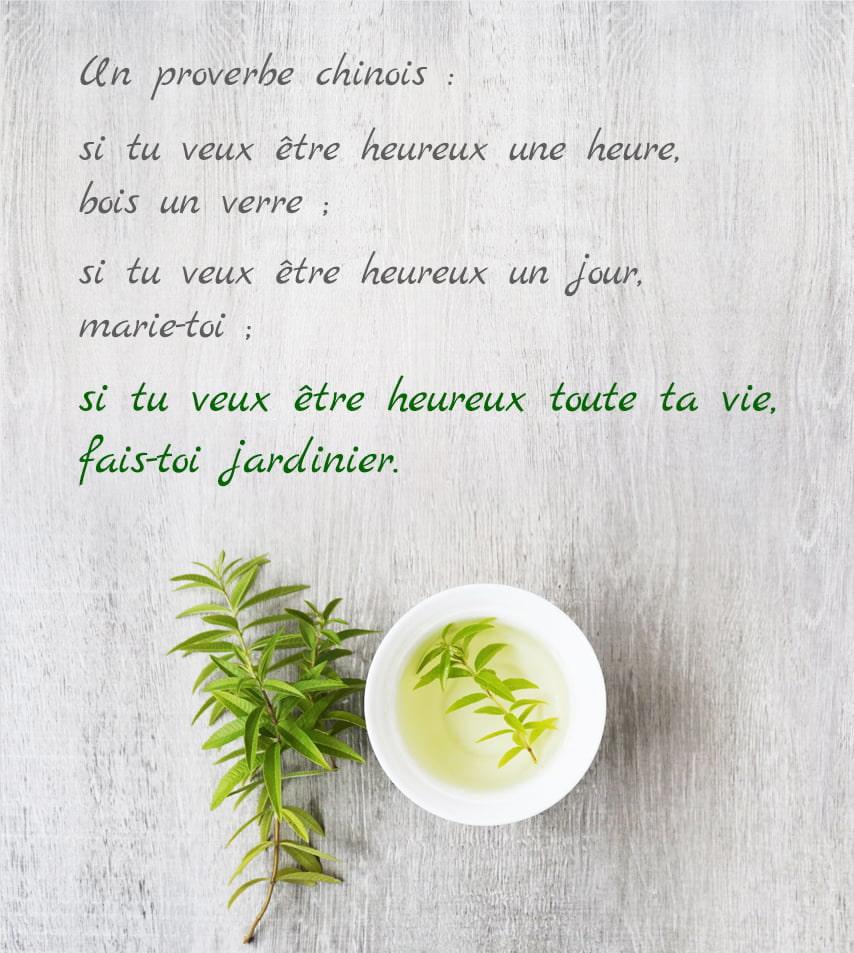 proverbe chinois jardinier heureux toute la vie