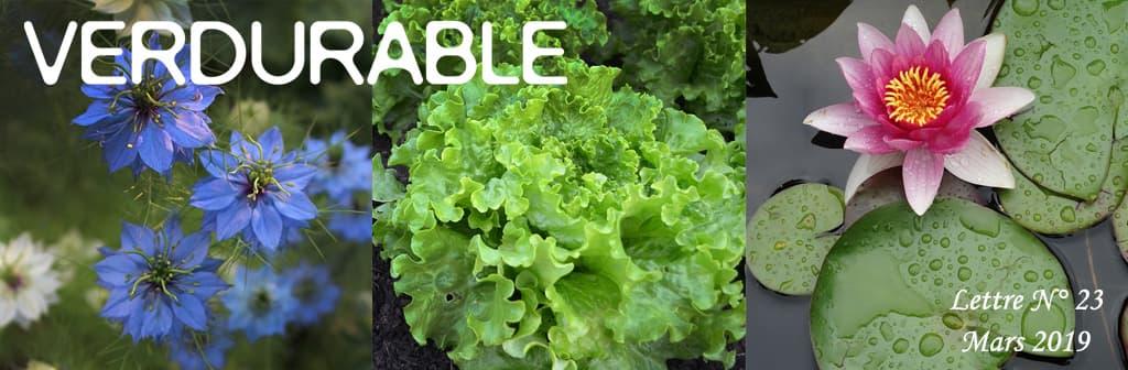 header verdurable lettre 23