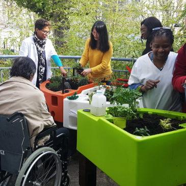 Association Nour accompagne les ateliers de jardinage à l'Hôpital Chardon-Lagache (AP-HP)