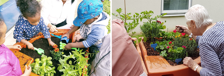 jardinage adapté verdurable