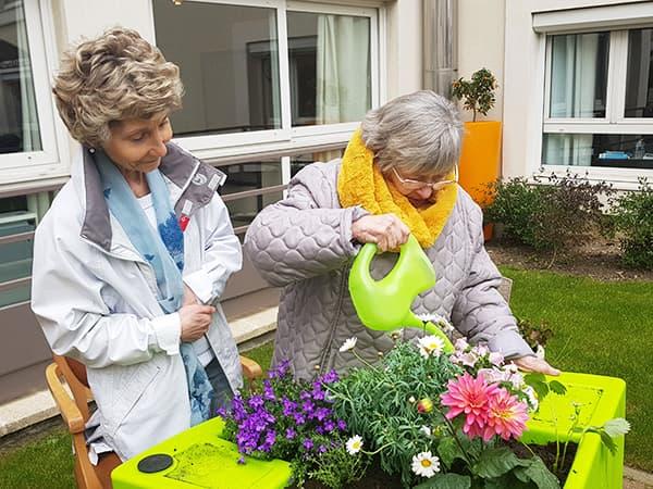 Jardinage Domusvi Azur Colombes 2019