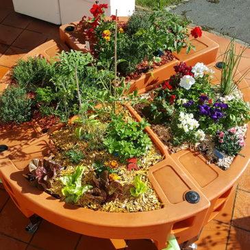 Éléments utiles au jardin d'été