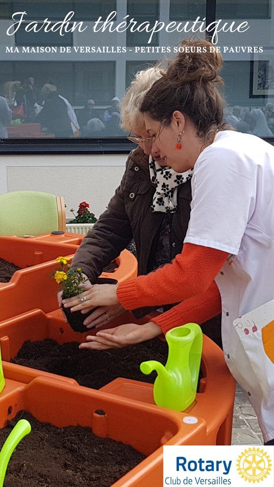 la première plante au jardin LPSP Versailles