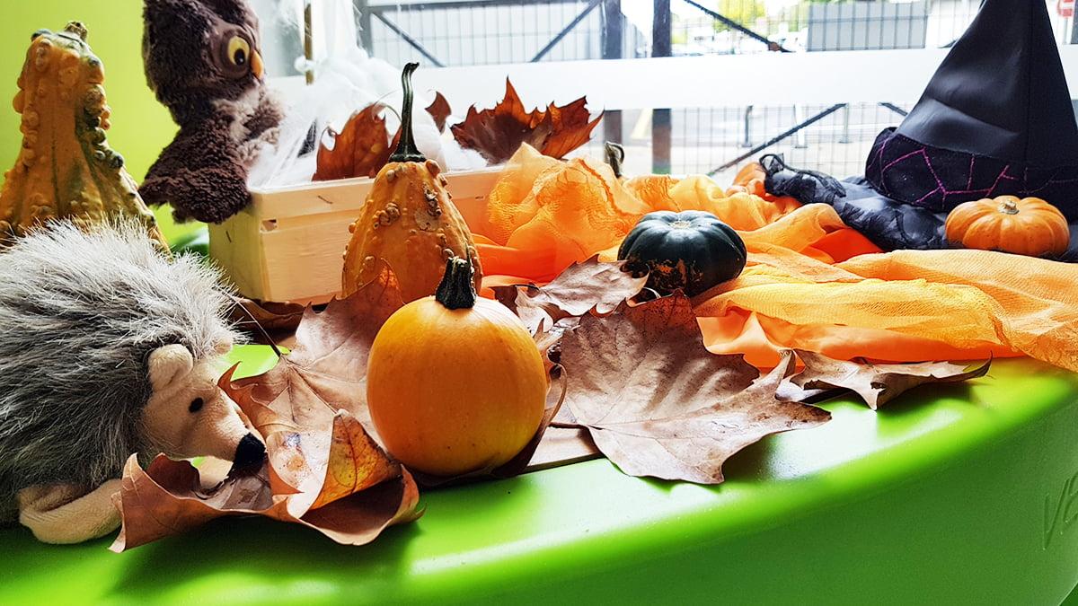 deco automne couverture