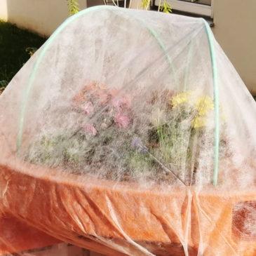 Hiver, comment protéger votre jardin surélevé en extérieur ?