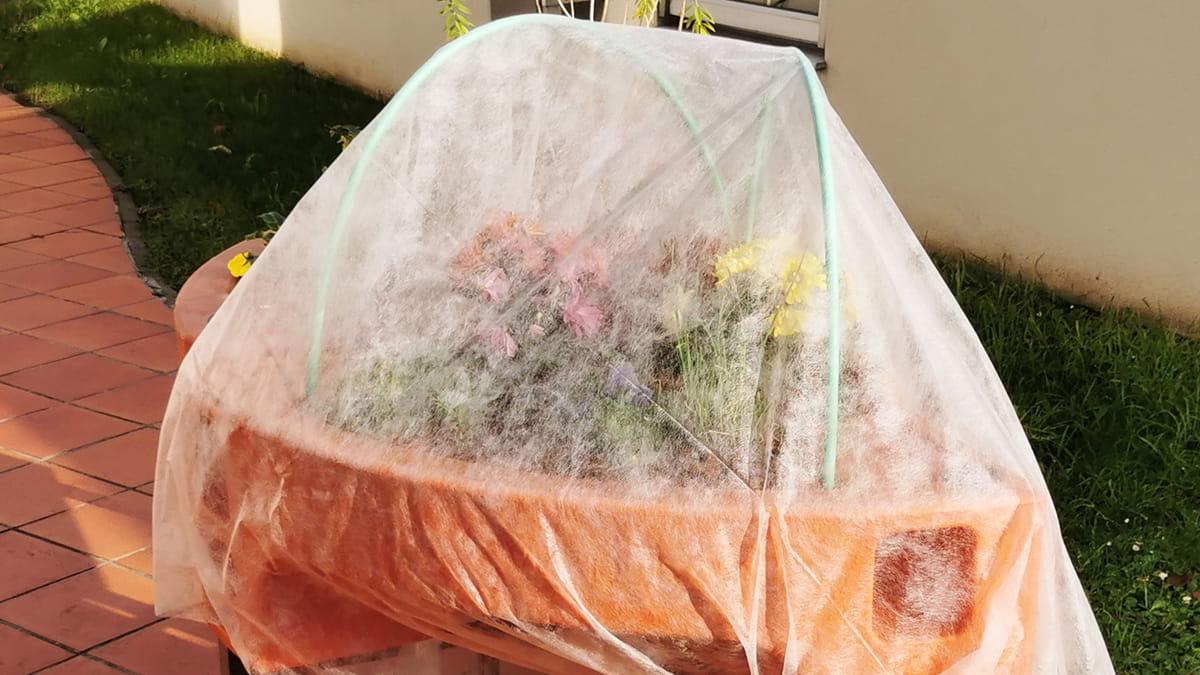 protection hivernale pour le jardin en exterieur