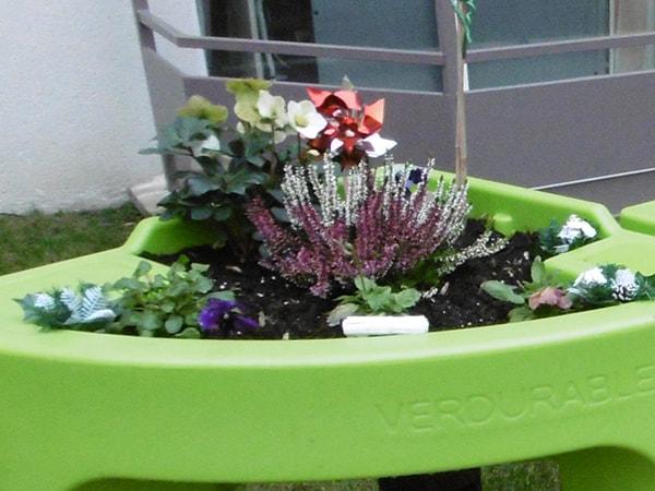 détail du jardin hiver Azur Colombe