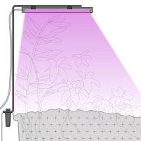 lampe de croissance pour les végétaux en intérieur