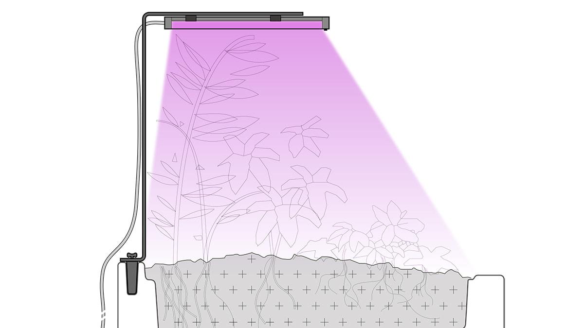 lampe-de-croissance-couverture