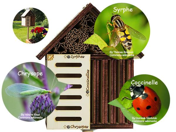gîte à insectes pour accueillir coccinelle syrphe chrysope