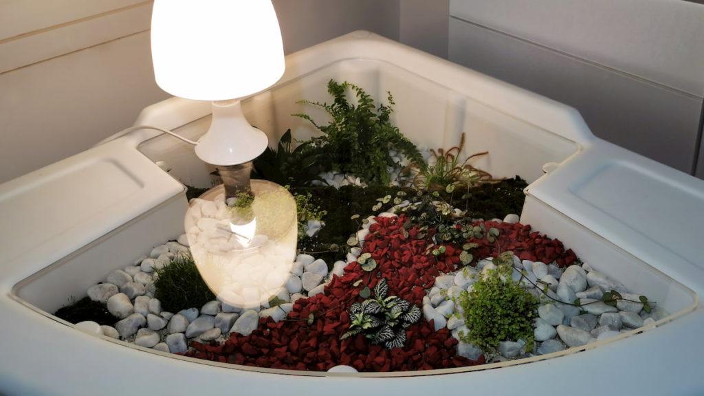 terrarium humide réalisé par Verdurable ambiance du soir