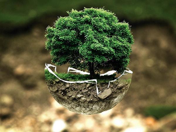 culture écologique pour notre planète