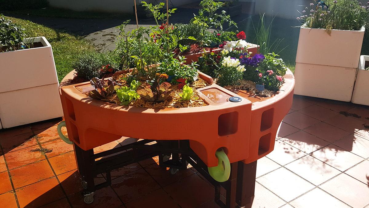 le-jardin-therapeutique-stimule-les-5-sens