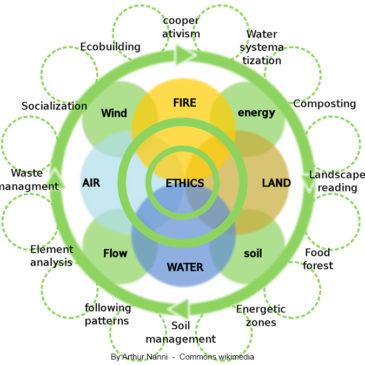 Permaculture, vers un futur plus vert ?