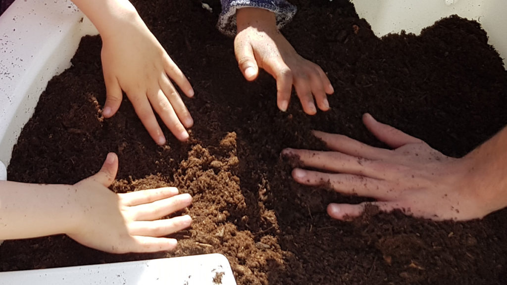 plantation jardinage