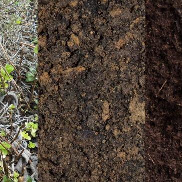 Comment préparer les sols