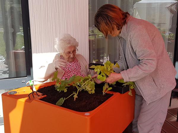 Elles cultivent le potager dans le jardin thérapeutique