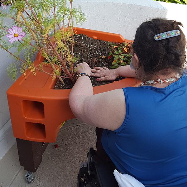 jardinage thérapeutique à l'hôpital les Bateliers