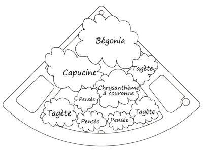 Schéma du jardin floral comestible 1
