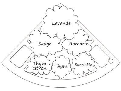 schema jardin aromatique méditerranéen