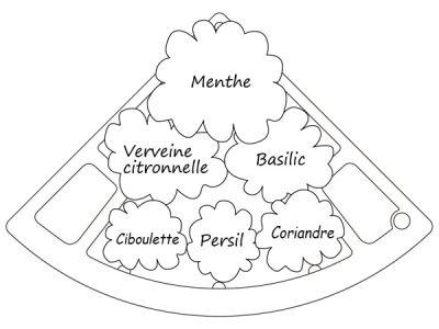 schema jardin aromatique savoureux